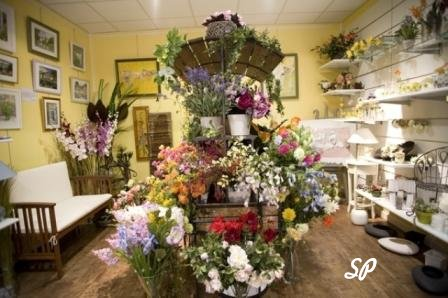 интересный дизайн цветочного магазина с полкой посреди комнаты