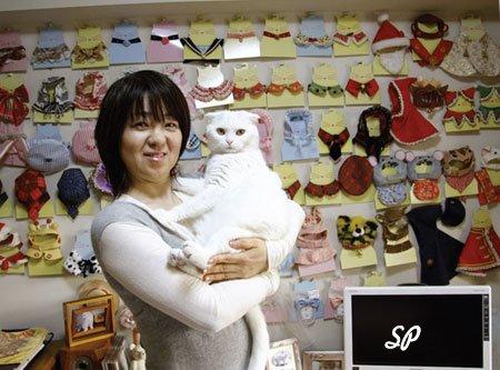 продавец магазина одежды для животных держит на руках белую кошку