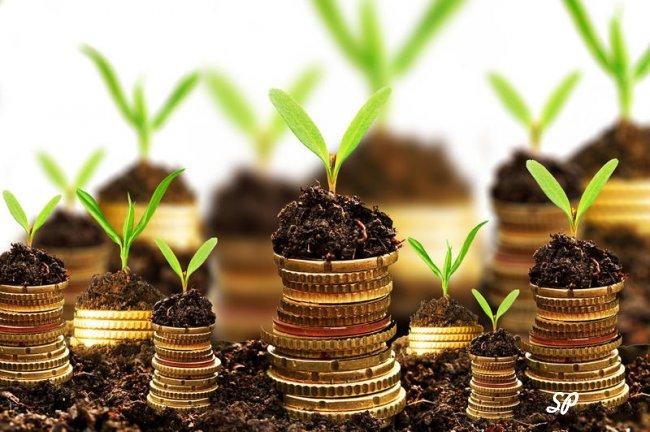 Инвестиции монеты