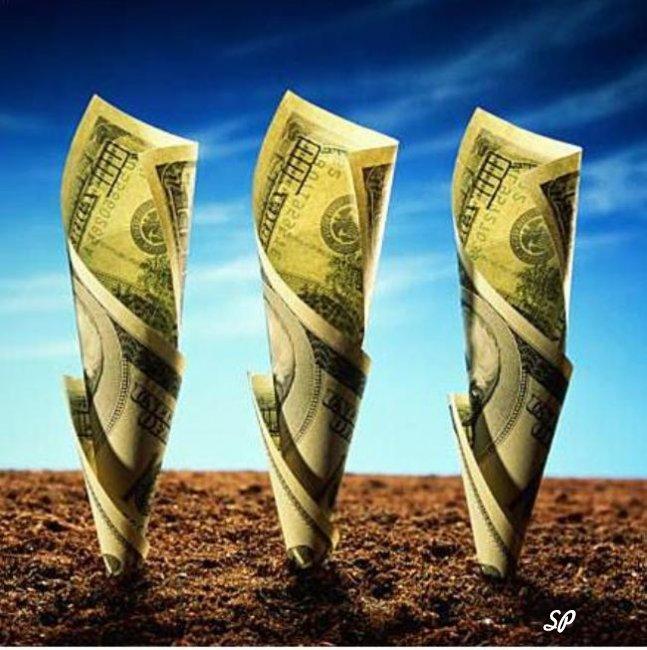 Купюры долларов США, растущие из земли
