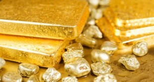Золотые слитки и крошка золота