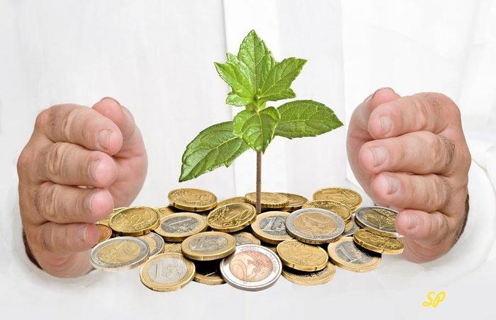 росток пробивается из монет, мужские руки образовывают круг вокруг ростка