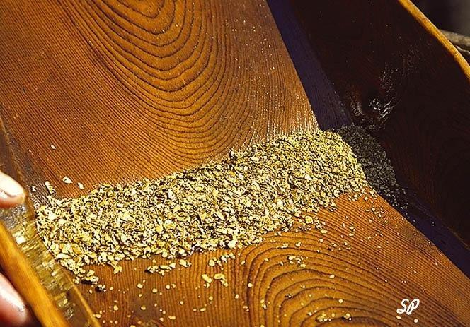 ручная добыча: россыпь золота на деревянном лотке