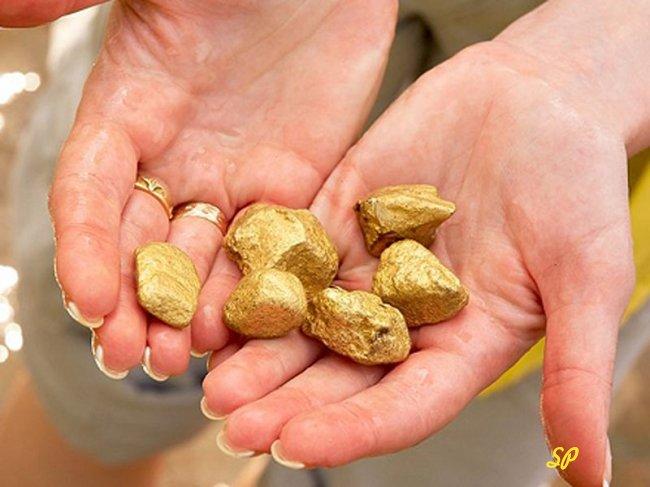 найденное в горах золото