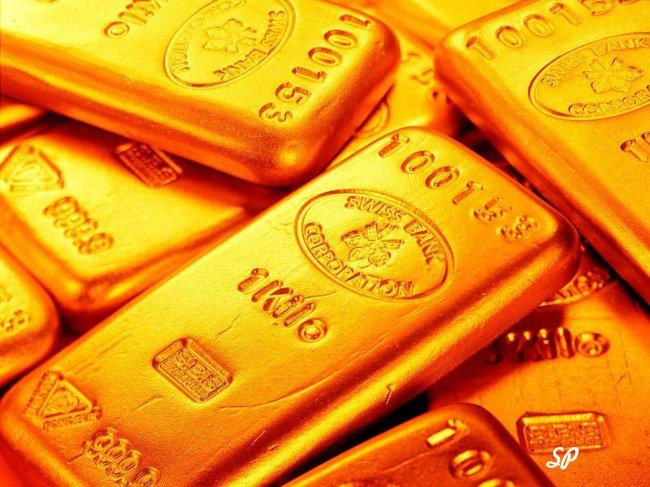 много золотых слитков
