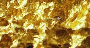 Золотой самородок